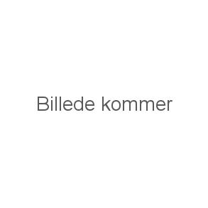 Bakkamera